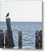 Seagull On A Post Metal Print