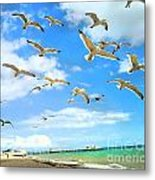Seagulls At Worthing Sussex Metal Print
