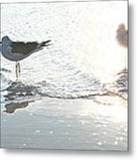 Seagulls In A Shimmer Metal Print