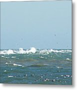Seagulls Surf And Sandbar Metal Print