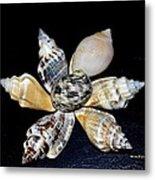 Seashell Floral Metal Print