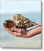 Seashell In Hand Metal Print