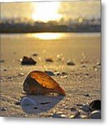 Seashells and Sunshine Metal Print