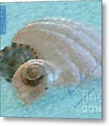 Seashells In Aqua Metal Print