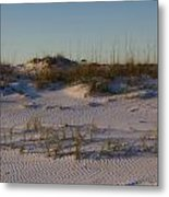Seaside Dunes 4 Metal Print