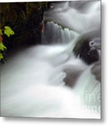 Seasons Rush By Metal Print