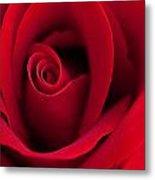 Sensual Red Metal Print