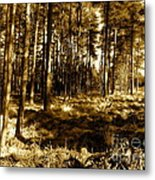 Sepia Forest Metal Print by Jessica Hubner