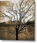 Sepia Tree Metal Print