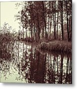 September Morning Metal Print