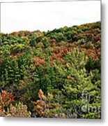 September Palate Metal Print