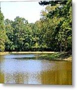Serene Lake In September Metal Print