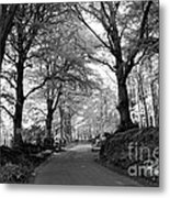 Serene Winding Country Road Metal Print