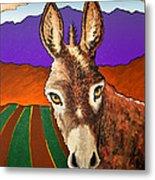 Serious Donkey Metal Print