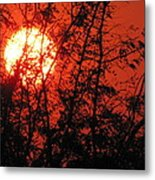 Setting Of The Day Metal Print