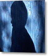 Shadow Metal Print by Barry Shaffer