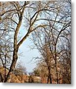Shadow Cliffs Metal Print