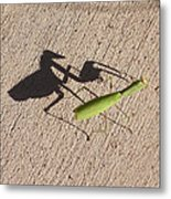 Shadow Mantis Metal Print