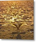 Shadow Of A Gull Metal Print by Tim Grams