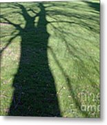 Shadow Of A Tree On Green Grass Metal Print