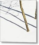Shadow Of Small Trees On The Snow New Metal Print