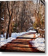 Shadowy Path Metal Print