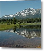 Shallow Water Reflections Metal Print