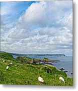 Sheep On A Hill Metal Print