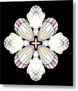 Shell Art 2 Metal Print
