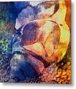 Shell Metal Print