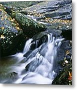 Shenandoah National Park Metal Print