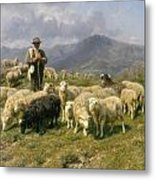 Shepherd Of The Pyrenees Metal Print