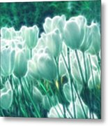 Shimmering Tulips Metal Print