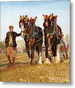 Shire Horses Metal Print