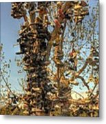 Shoe Tree Metal Print by Lori Kimbel