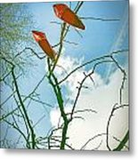 Shoes In The Sky Metal Print