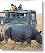 Shooting Rhinos Metal Print