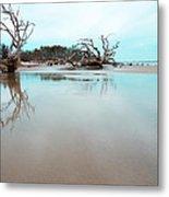 Shoreline - Driftwood Beach Jekyll Island Metal Print