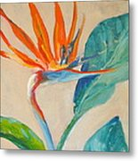 Showy Bird Metal Print