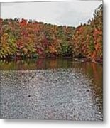 Sibley Pond Metal Print