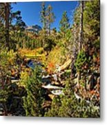 Sierra Nevada Fall Beauty At Lily Lake Metal Print