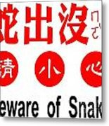 Sign In Chinese About Snake Danger Metal Print