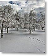 Silent Winter Metal Print