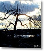 Silhouette In Sunset Metal Print