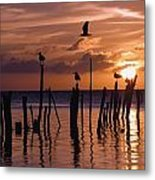 Silhouette Of Seagulls On Posts In Sea Metal Print