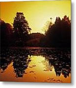 Silhouetted Home And Trees Near Water Metal Print