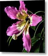 Silk Flower Metal Print