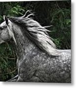 Silver Dapple Metal Print