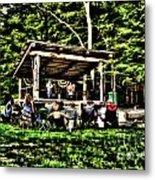 Silver Lake One Man Jam Fest Metal Print