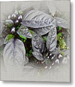 Silver Leaves And Berries Metal Print